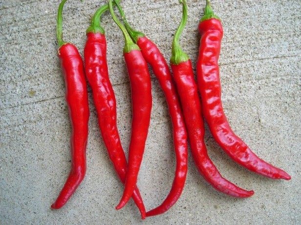 cayenne-chili-peppers
