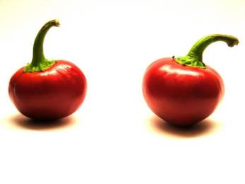 cherry-bomb-pepper_1