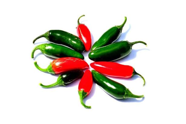 jalapeno-5-pack-collection-hot-pepper-joes
