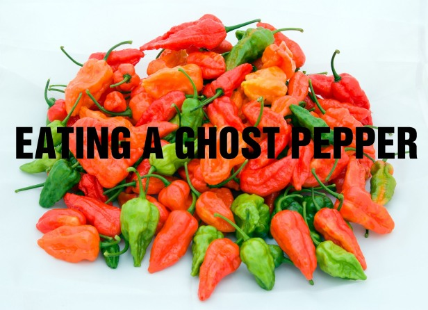 eating_ghost_pepper